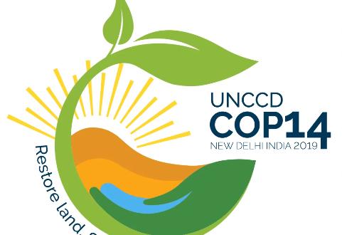 "<div class=""erm-title-wrapper"">UNCCD COP 14, New Delhi</div>"